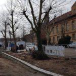 Neue Platzgestaltung in St. Ilgen - Baumfällarbeiten erforderlich