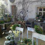 Am Wochenende: Frühlingserwachen im Landgut Lingental