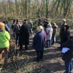 Nußlocher Forsteinrichtung 2019-2028 - Waldbegang mit Bürgerbeteiligung