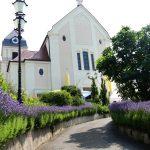 Schönes Gemeindefest zum Herz-Jesu-Patrozinium in Leimen