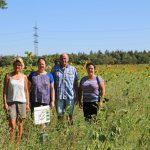 5 Hektar neue Blühflächen in Sandhausen und Insektenhotels fördern biologische Vielfalt