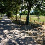 """Feierecke"" an Leimener Hundewiese: Parkbank demontiert- von wem?"