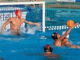 Wasserball-Torwart Bojan Mrdja wechselt zur SGW