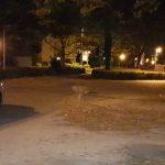 Gefährlicher Eingriff in den Straßenverkehr: Unbekannte legen Findling auf Straße