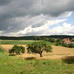 FDP Leimen: Klar gegen ein Wohngebiet Weidenklinge II in Gauangelloch