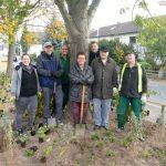 Haus & Grund aktiv bei Pflanzaktion - Kostenbeteiligung von 1.000 €