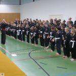 Viele Teilnehmer: Süddeutsche Meisterschaften Viet Vo Dao Formen 2018 in Leimen
