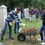 Volksbund bietet internationale Jugendbegegnungen und Workcamps