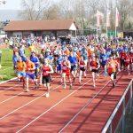 302 Teilnehmer beim St. Ilgener Germanenlauf - Starkes Ergebnis des OB-Ehepaares