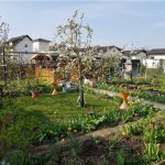 Ostergruß der Gartenfreunde Probsterwald