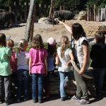 VdZ-Studie belegt:Zoos leisten wertvolle Bildungsarbeit – Außerschulische Lernorte im Naturbereich