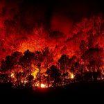 Achtung Waldbrandgefahr!  Waldbesucher werden um besondere Umsicht gebeten