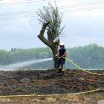 Wegen der Dürre hohe Brandgefahr: In Wald und Flur und auch innerorts