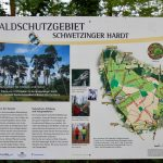 Alternative Liste Sandhausen zur geplanten Waldrodung