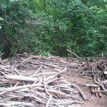 Nußlocher Waldkindergarten leidet unter Vandalismus - Hütte zerstört