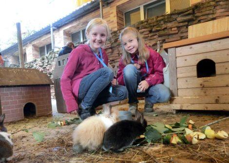 Haustier-Workshop der Zooschule am Ende der Sommerferien