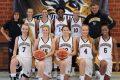 Wildbees Sandhausen – Basketball-Regionalliga-Damen: Alles neu!