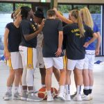 Basketball Wildbees Damen: Crime-Time gegen PS Karlsruhe