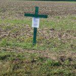 Protest auf dem Feld: Grünes Kreuz soll auf verfehlte Agrarpolitik hinweisen