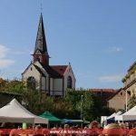 Naturparkmarkt in Gauangelloch