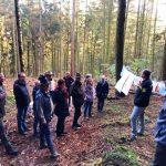 Waldbegehung des Gemeinderates - Maßnahmen zur Zukunftsfähigkeit des Waldes vorgestellt