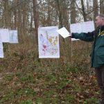 Wald in St.Ilgen: Nach Holzeinschlag Neuanpflanzung klimatisch angepasster Baumarten