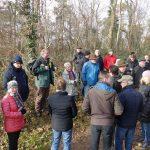 Waldbegehung in Leimen-St. Ilgen: Schwerste Dürreschäden – Kaum ein Baum überlebt