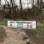 LEBENSGEFAHR nach Sturm - St. Ilgener Wald und Trimm-Dich-Pfad gesperrt