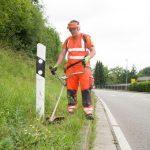 Wiederkehrendes Ärgernis: Illegal entsorgter Abfall am Straßenrand