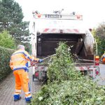 AVR bietet kostenfreie Abholung von Grünschnitt an