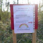 Woanders ist man auf dem Holzweg - In Sandhausen jetzt auf dem Steinweg