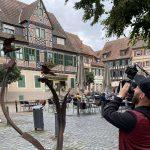 """Videoreihe """"Urlaub so nah"""" – Freizeittipps für den Sommer in der Region"""