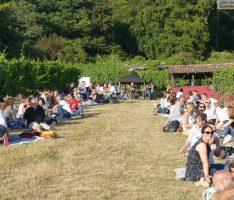 Der Vorhof zum Paradies: 99 Genießer und ein Antrag beim Picknick im Weinberg