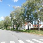 Leimbachstraße heute und morgen wegen Baumfällarbeiten gesperrt