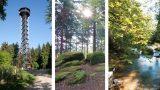 Sommerferien in der Region: </br>Heimat neu entdecken – Freizeit-Tipps Teil II