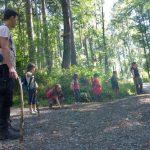 """""""Gemeinsam für den Wald"""" – Deutsche Waldtage 2020 – Das Kreisforstamt macht mit"""