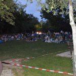 """Erstmals Open-Air Kino im Brunnenfeld Nußloch - 150 Besucher sahen """"Nightlife"""""""