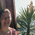 Yucca-Palme überwacht Baustelle und blüht dabei auf