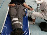 Zwei Tage Blutspende in Leimen, ein weiterer mit freien Terminen folgt