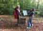 Waldspaziergang auch in Corona-Zeiten: Leimener Meditationsweg mit fünf neuen Tafeln