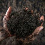 Amtlich: Sinsheimer AVR Bioabfall-Vergärungsanlage produziert ausgezeichneten Kompost