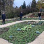 Neues Gärtner-gepflegtes Gräberfeld auf dem Bergfriedhof in Leimen
