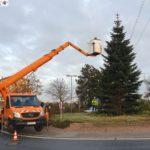 Haus & Grund Leimen spendete erneut 500,- € für den Kreisverkehr-Weihnachtsbaum