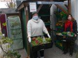 Lebensmittel retten: Food-Sharing Gruppe richtet Fairteiler-Station in Sandhausen ein