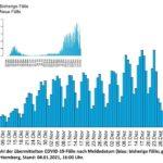 COVID-19 Tagesbericht des Landes-Gesundheitsamtes und Faktenblatt RN