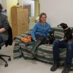 Tom-Tatze-Tierheim - Vorsätze und Vorhaben - Gesund bleiben und Hundehalle sanieren