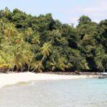 Worauf bauen wir? - Weltgebetstag am Freitag trotz(t) Corona - Vanuatu im Mittelpunkt