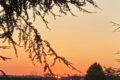 Fesh Fesh – Trockener Wüstenstaub über der Region – Tolle Sonnenuntergänge