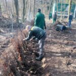 Morgen, am  am 21. März: Frühlingsanfang und Internationaler Tag der Wälder