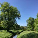 Wasser für Wald und Felder: Speichern und versickern lassen, statt schnelles ableiten